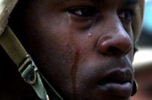 Article : les pleurs d'un démocrate