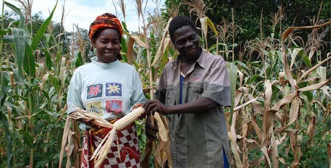 agriculteur africain
