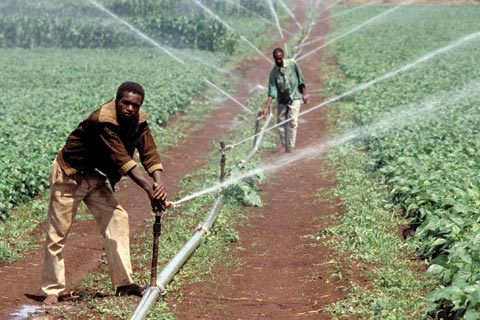 ph: investing-african-agriculture-2