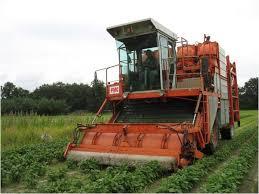 kongocentral: agriculture mécanisée